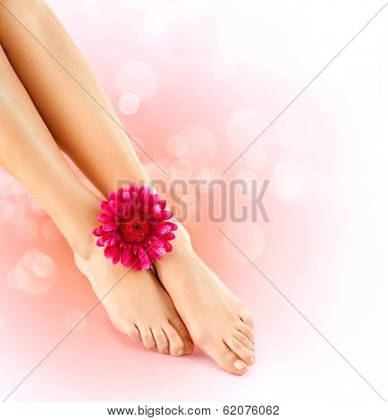 Woman's Feet isolated on white. Pedicure concept. Nails. Spa. Skincare. Depilation. Epilation. Legs and herbera flower