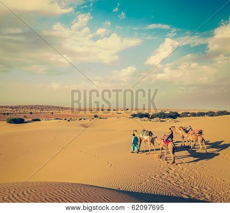 Vintage retro hipster style travel image of Rajasthan travel background - two Indian cameleers (camel drivers) with camels in dunes of Thar desert. Jaisalmer, Rajasthan, India