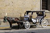 Horse drawn carriage waiting for tourists in historic Guadalajara, Jalisco, Mexico poster