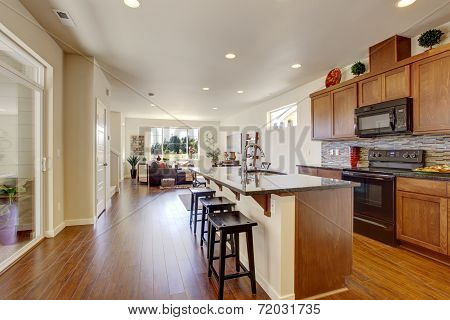 House Interior With Open Floor Plan. Kitchen Room Wiht Island