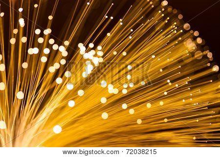 Fibre Optic Light
