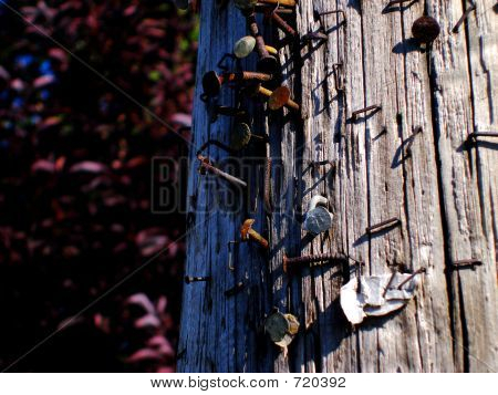 Utility Pole Close-Up