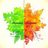 Summer and autumn vector foliage season banner poster