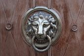 red tanned door-handle in shape of lion poster