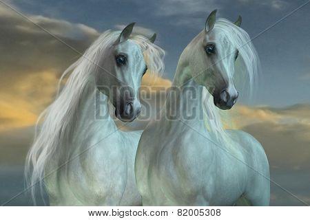 Arabian Brothers