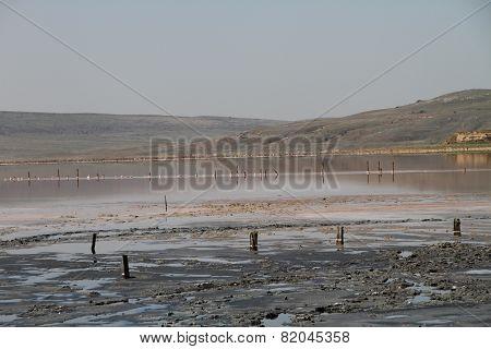 Therapeutic salt lake with mud. Chokrakskoe lake in Crimea poster