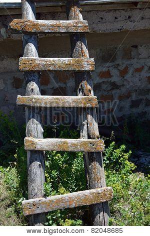 Cude Wornout Ladder Outdoors