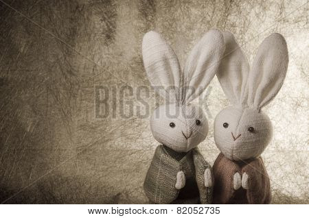 couple Japanese rabbits