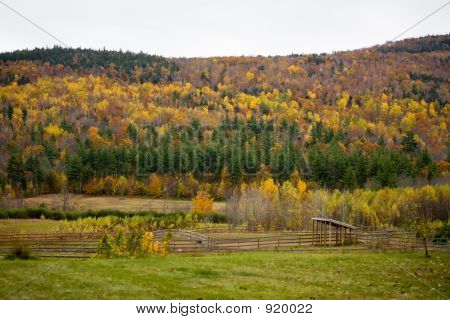Small Farm In Fall Foliage