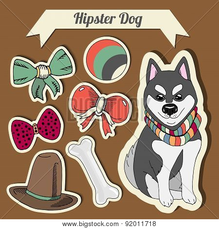 Vector Hipster Husky Dog With A Dog With A Set Of Toys: Ball, Bows, Bone , Hat. Hand Drawn Colorful