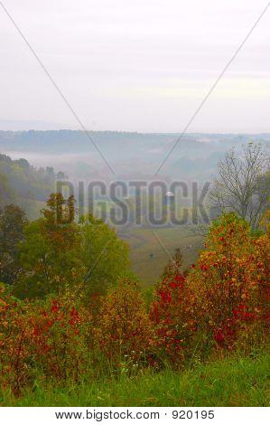 Fog On The Farmland