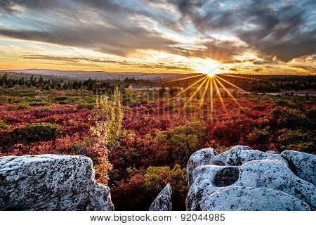 Dolly Sods West Virginia Sunset