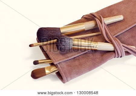 Makeup Brushes in a pink leather cover