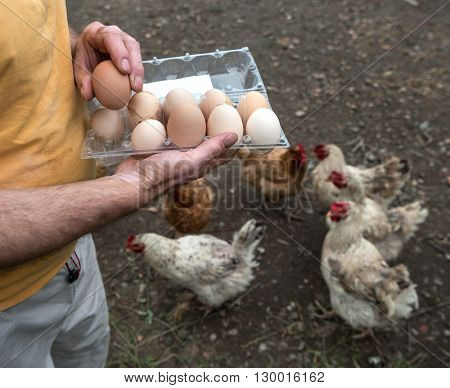 Farmer In The Poultry Yard