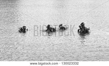 Divers ready for descent BW / Four divers in the water are preparing for descent. Black and white.