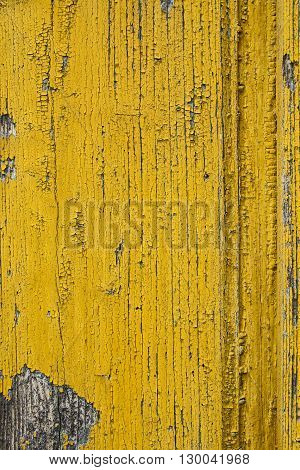 Old wooden surface on the door with peeling paint.