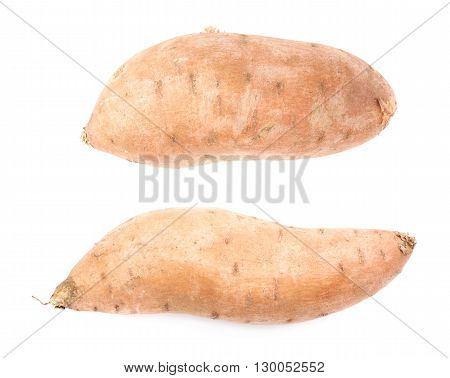 Sweet potato plant or Ipomoea batatas isolated over the white background, set of two different foreshortenings