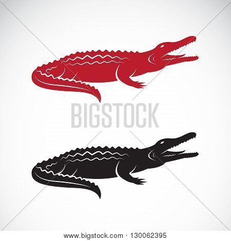Vector image of an crocodile design on white background Logo Symbol