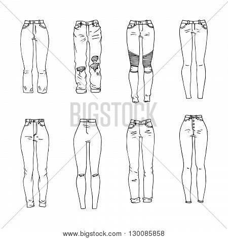 Hand drawn vector clothing set. Different models of trendy jeans.