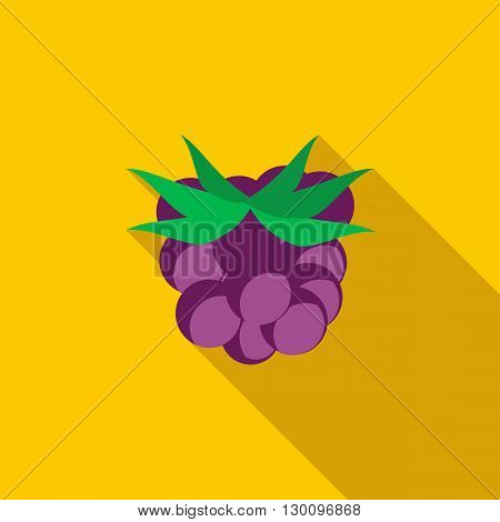 Blackberry icon in flat style with long shadow