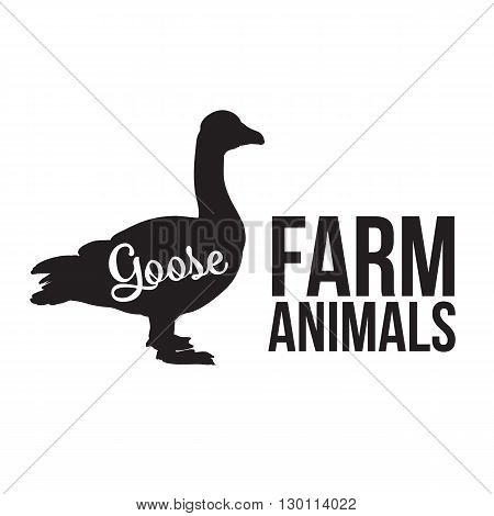 Grey goose, poultry, illustration sketch, farm feathered animal, one color and the beautiful goose on a yellow background