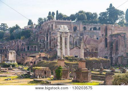 historical forum romanum in rome panorama picture