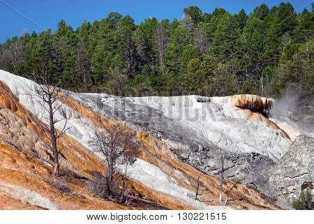 Bright colors of Palette Spring makes it memorable Mammoth Hot Springs Yellowstone National Park