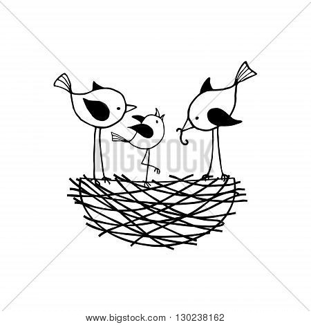 Family birds in a nest the parents feed their nestling. Vector сontour illustration.