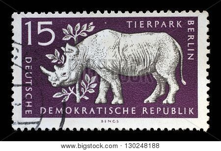 ZAGREB, CROATIA - JULY 02: a stamp printed in GDR shows Rhinoceros, Berlin, German Zoological Garden, circa 1956, on July 02, 2014, Zagreb, Croatia