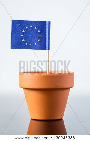 Plant Pot With European Flag