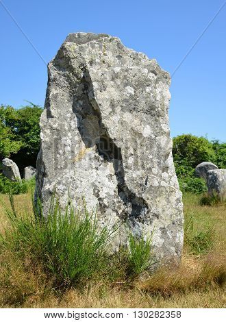 Megalithic monuments menhirs in Carnac  - Brittany, France