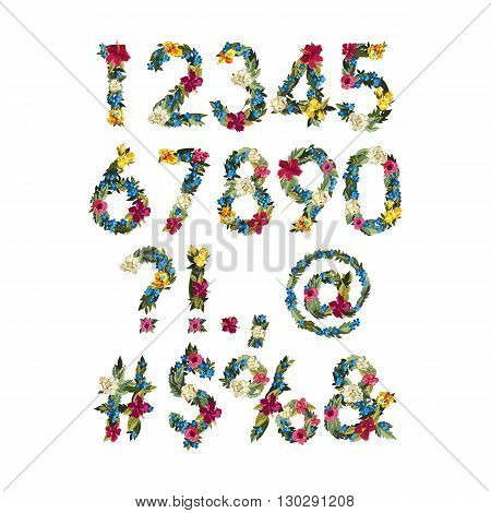 Numbers, Vector Colorful Flower Font For Your Design Vector illustration. Grotesque style. Floral alphabet. Numbers and punctuation marks.