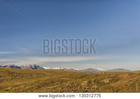 Denali Park Mount Mc Kinley Panorama
