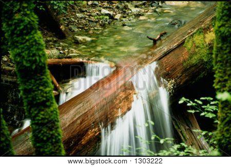 Waterfall Through Log