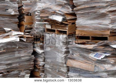 Recycled Cardboard