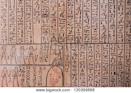 egyptian old hieroglyphs on papyrus close up
