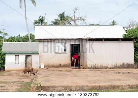 Hovel, Shanty, Shack In Tonga, Polynesia
