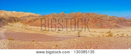 The dry desert region of Eilat mountains with poor vegetation and scenic colored landscape Israel.