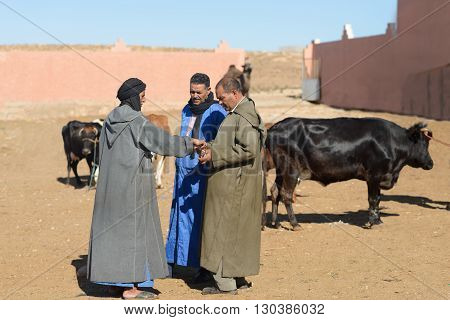 GUELMIM MOROCCO - OCTOBER 31 2015: Men bargaining at the weekly market in the south Moroccan town of Guelmim.