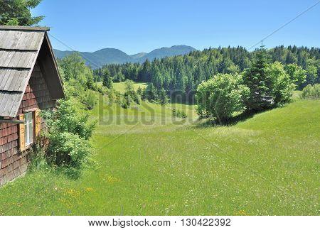 View over Pokljuka Plateau in Triglav National Park near Bled in Slovenia