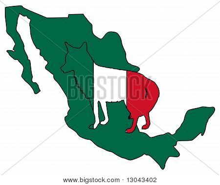 Detailed and colorful illustration of coyote Mexico poster
