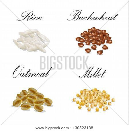 Millet buckwheat oatmeal millet set illustration vector