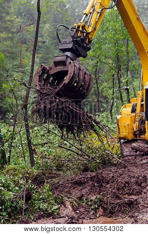 Hydraulic arm of excavator used to dig up tree-stumps and roots after the forest was removed.