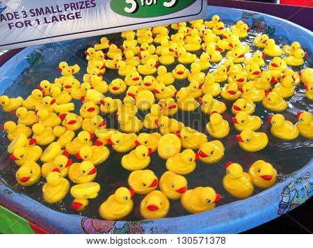 Rubber duckies floating in a toy pool at a fair