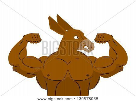 Wild Strong Donkey Athlete. Aggressive Fitness Animal. Wild Animal Sportsman With Huge Muscles. Body