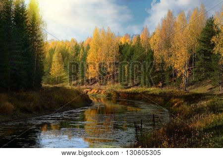 Beautiful yellow autumn on a calm river