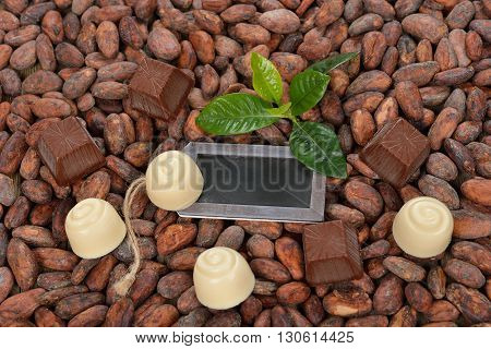 Chocolate truffles with natural ingredients close up