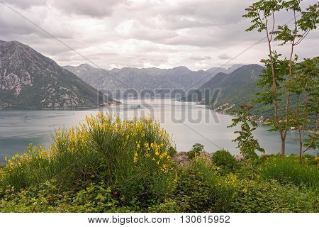 Beautiful Landscape With Sea And Mountains. Montenegro Seashore, Bay Of Kotor.