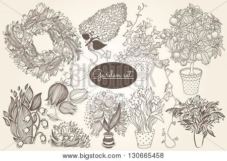 Garden set with 10 plants in flowerpot: bluebell, citrus tangerine, campanula, narcissus, tulip and ivy. Design template in vintage gravure style. 10 in 1.
