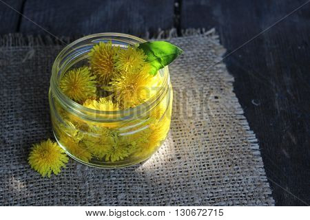 Yellow dandelion flower in a glass jar with water nafone boards and Llano tissue. Tincture